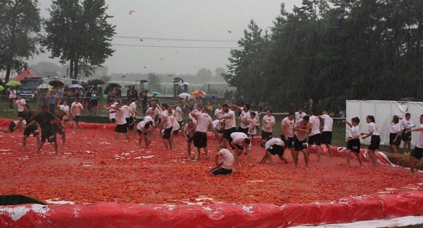 Imprezy, Pomidorowe szaleństwo Janowie - zdjęcie, fotografia