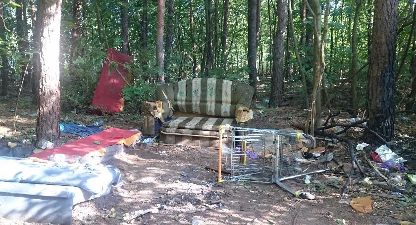 Ekologia, Recepta góry śmieci otwockich lasach - zdjęcie, fotografia