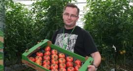 jak-vegapol-stal-sie-liderem-produkcji-pomidora